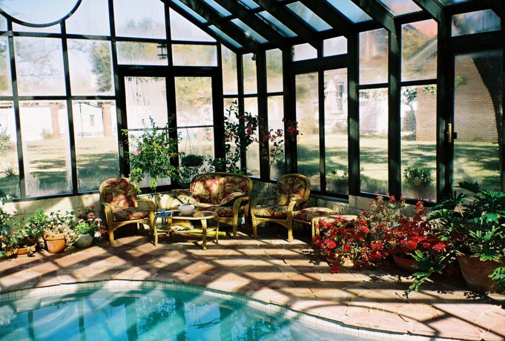 ней зимний сад фото в доме собака-универсал